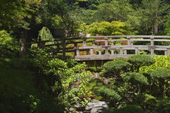 Japanese Bridge Stock Image
