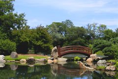 Japanese Bridge. Over a pond stock photography