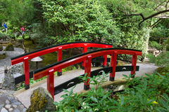 Japanese bridge in Butchart Gardens, Victoria, Canada. Red Japanese bridge in Butchart Gardens in Victoria, British Columbia, Canada on sunny day stock image