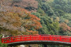 Japanese bridge at fall Stock Photos