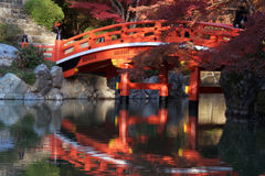 Japanese bridge in fall. A traditional japanese wooden bridge spanning over a quiet pond stock image