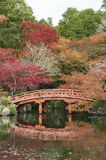 Japanese bridge in garden. In Autumn season. Oriental natural background stock images