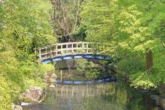 Japanese bridge. Image taken of a Japanese bridge inside regents park in autumn, london, england Royalty Free Stock Photography