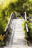 Japanese bridge. Over the water royalty free stock photography
