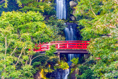 Japanese Bridge and Waterfall Stock Image