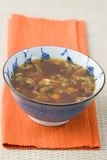 Japanese Broth Royalty Free Stock Photo