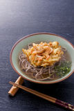 Japanese buckwheat noodles Stock Images