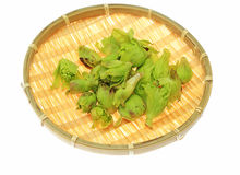 Japanese butterbur sprout on a bamboo colander Stock Image