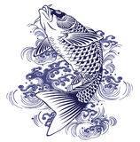 Japanese carp Royalty Free Stock Photo