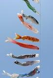 Japanese carp kite decoration Royalty Free Stock Photo
