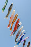 Japanese carp kite decoration Stock Photos