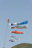 Japanese carp kite Royalty Free Stock Image