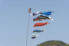 Japanese carp kite Royalty Free Stock Images