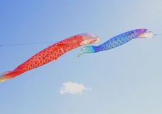 Japanese carp kites Royalty Free Stock Image
