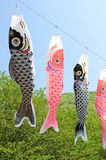 Japanese carp-shaped streamer Royalty Free Stock Photography