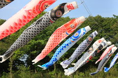 Japanese Carp Streamer Royalty Free Stock Photos