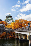 Japanese Castle with autumn leaves. Stock Images