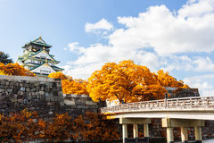 Japanese Castle with autumn leaves. Stock Photos