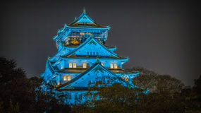 Japanese castle by night Royalty Free Stock Photo