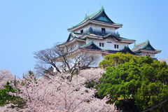 Japanese castle in wakayama Stock Images