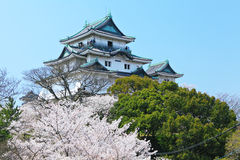 Japanese castle in wakayama Stock Photo