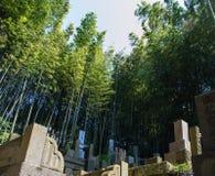 Japanese Cemetery Royalty Free Stock Photo