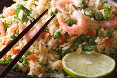 Japanese chahan: fried rice with shrimp macro. Horizontal Stock Image