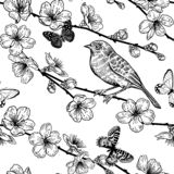 Japanese cherry, bird and butterflies. Seamless pattern. Black and white royalty free illustration