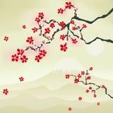 Japanese cherry blossom. Illustration Stock Photo
