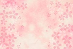 Japanese cherry blossom abstract on pink paper background Stock Images
