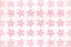 Japanese cherry blossom pattern abstract on traditional paper background. Japanese pink cherry blossom pattern abstract on traditional paper background