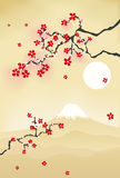 Japanese cherry blossom postcard Royalty Free Stock Photography