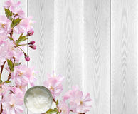 Japanese cherry blossoms and body cream jar on white wood Stock Photos