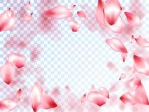 Japanese cherry petals on transparent background. Invitation card background. Pink japanese cherry blossom petals flying vector. Blooming flower parts scatter vector illustration