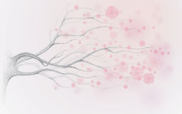 Japanese cherry tree stock illustration