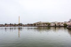 Tidal Basin at Cherry Blossom Time stock images