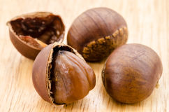 Japanese Chestnut , Castanea crenata. Royalty Free Stock Photos
