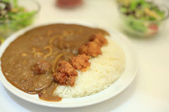 Japanese chicken curry with stream rice Stock Image