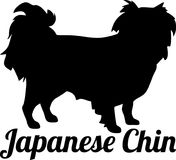 Japanese Chin silhouette real word Stock Image