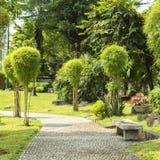 Japanese garden in Rizal Luneta park, Manila, Philippines. Japanese Chinese garden in Rizal Luneta park, Manila, Philippines on a sunny day royalty free stock photography
