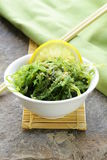 Japanese Chuka seaweed salad. Traditional Japanese Chuka seaweed salad Royalty Free Stock Photo