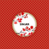 Japanese classic red pattern with sakura logo. Japanese classic red and gold pattern, with round sakura logo, branch with pink flowers in blossom, vector Royalty Free Stock Image