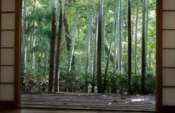 Japanese classic window and bamboo garden stock photos