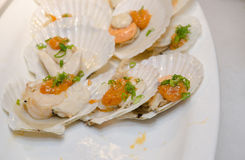 Japanese cold scallop dish Royalty Free Stock Photos