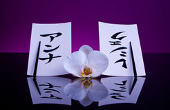 Japanese Composition. Composition of orchid, chopsticks and two cards with Japanese characters Royalty Free Stock Photo