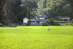 Japanese country stock photos