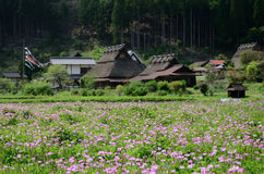 Japanese country village in spring, Kyoto Japan Stock Photos
