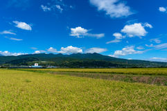 Japanese countryside landscape with rice field Stock Photo