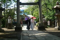 Japanese Couple with Umbrellas Royalty Free Stock Image
