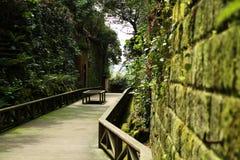 Japanese courtyard. The promenade in Japanese courtyard Stock Photo